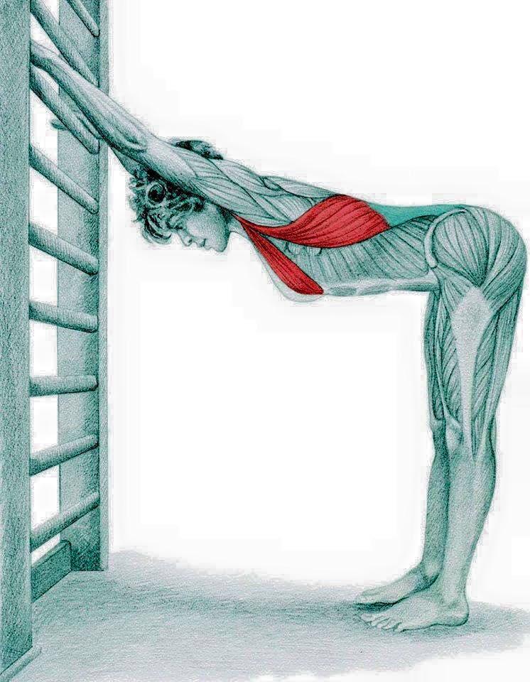 foto-gym-98 - Treino Funcional