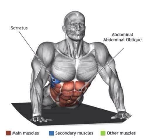 Exercicios Alongamento