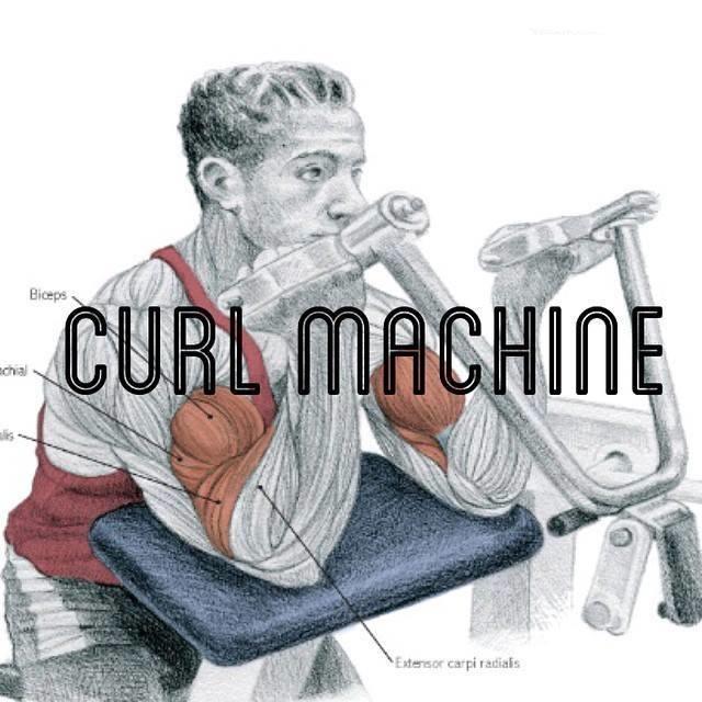 Exercícios de bíceps foto 4