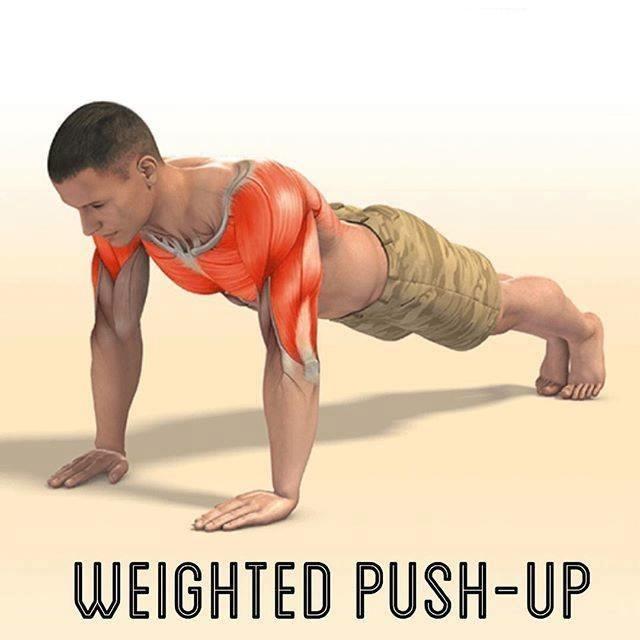 Exercícios de bíceps foto 8
