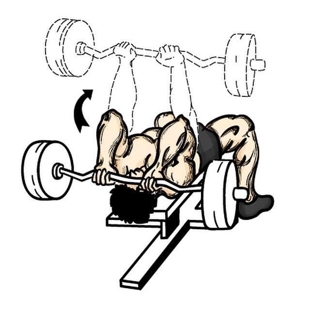 Exercícios para tríceps foto 2