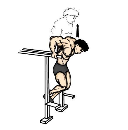 Exercícios para tríceps foto 3