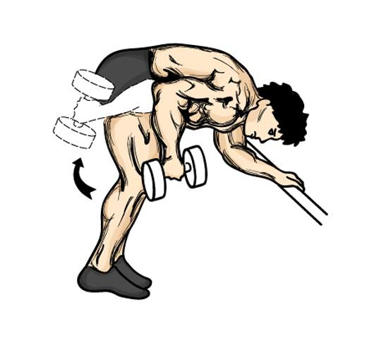 Exercícios para tríceps foto 4