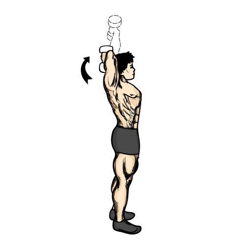 Exercícios para tríceps foto 6