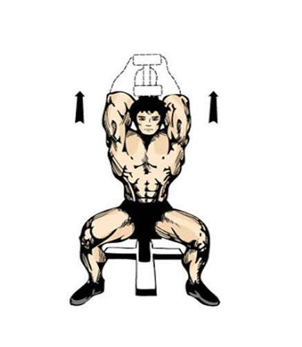 Exercícios para tríceps foto 8