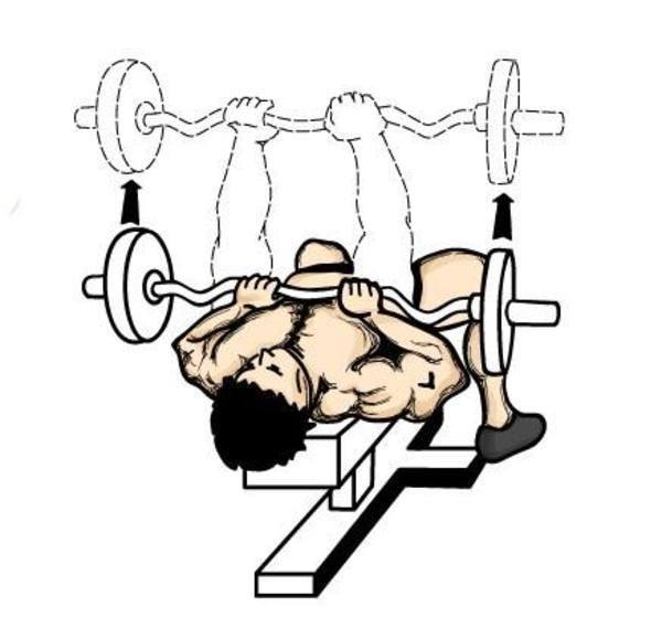 Exercícios para tríceps 1