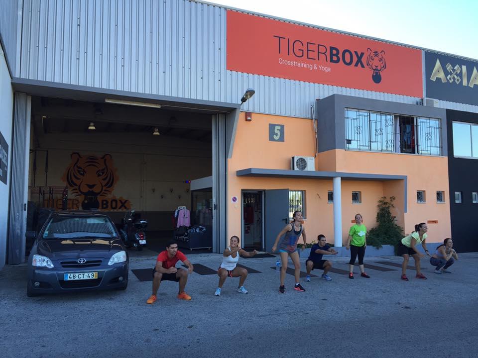 Tigerbox armazem